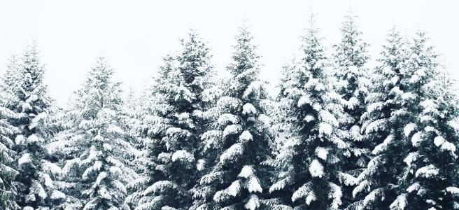 Tips for a healthier, happier winter