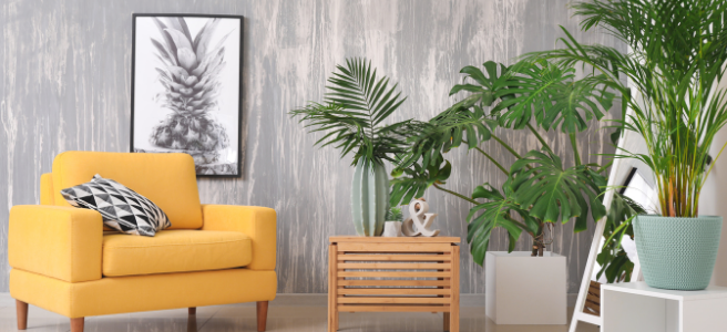 Top 3 summer tones guaranteed to bring happiness into your home